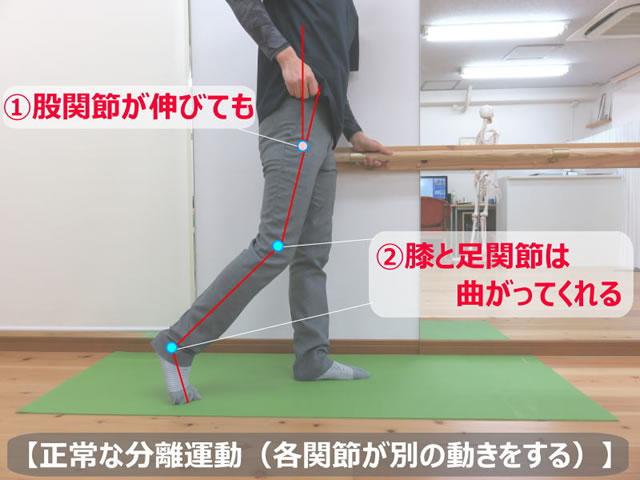 nokosoku-katamahi-img_03