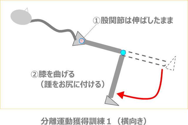 nokosoku-katamahi-img_06