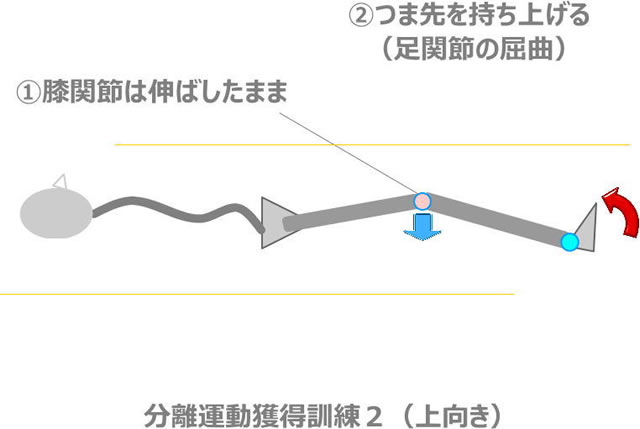 nokosoku-katamahi-img_08